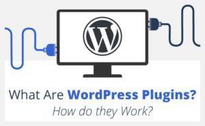 What are WordPress plugins? How do WordPress plugins work?